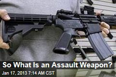 So What Is an Assault Weapon?