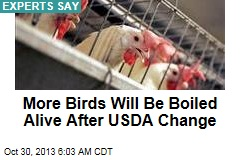 Experts: USDA Plan Will Boil More Birds Alive