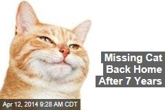 Missing Cat Back Home After 7 Years